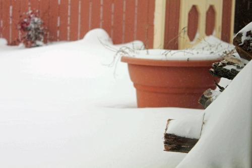 Feb012011-26